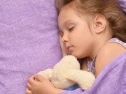 """Los más pequeños también quieren su """"teddy bear"""". Foto: Shutterstpck"""
